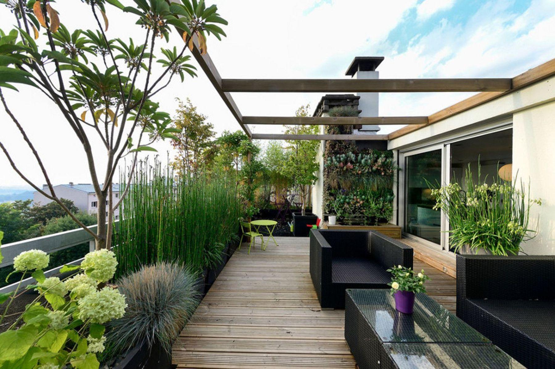 Зеленая зона на крышах